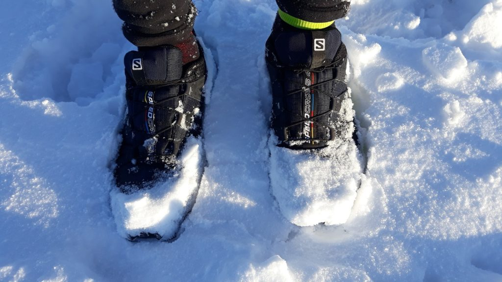 photo of Salomon Speedcross 4 GTX in snow