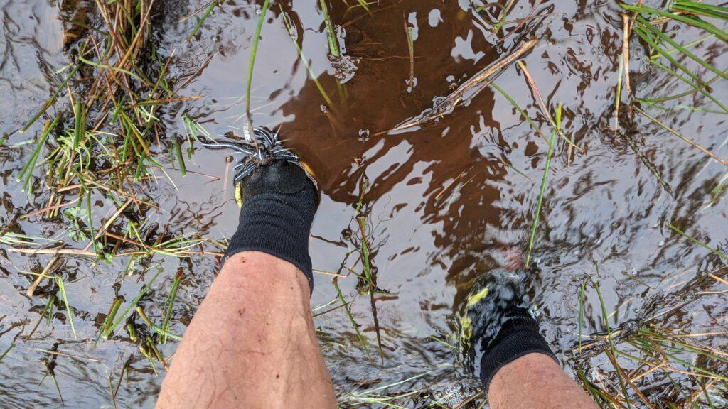 photo of 360Dry waterproof socks in a bog